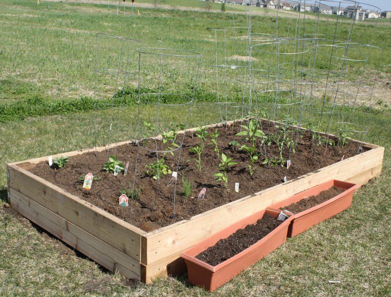 ... Potting Soil. Backyard Garden