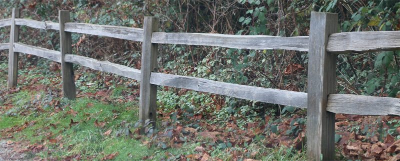 Backyard Fencing How To Pick The Right Fence For Keeping