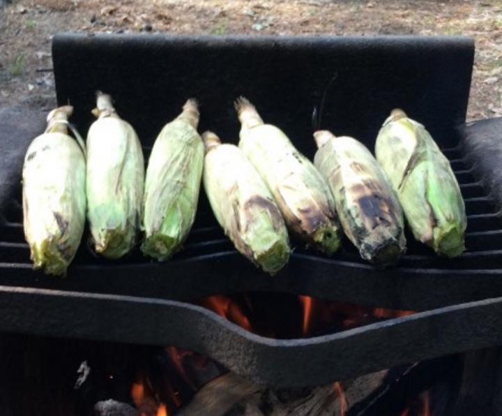 campfire-corn-on-the-cob