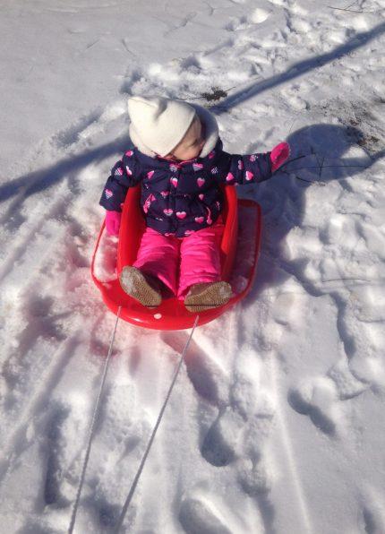 pulling-sled