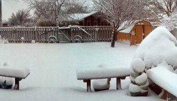 snowy-backyard