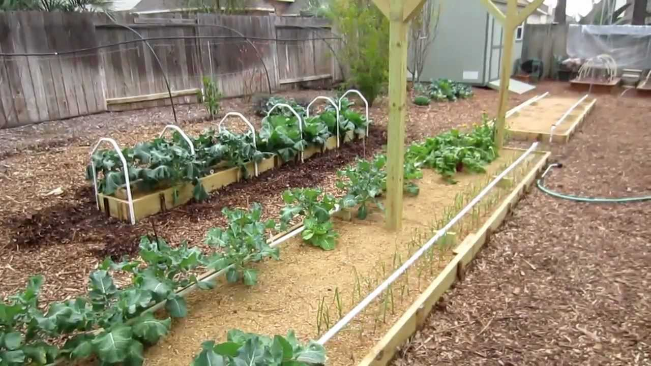 The mittleider gardening method answers to all of your for Gardening questionnaire