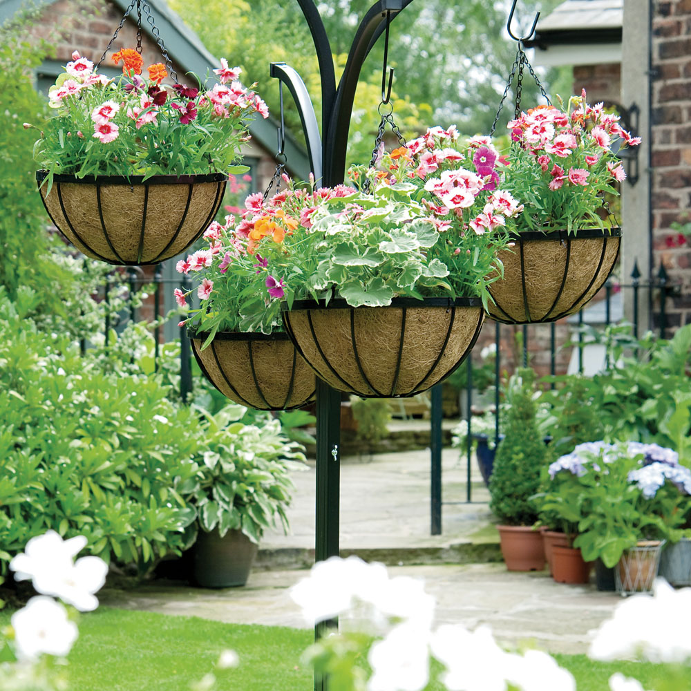 Hanging flower baskets the only guide you 39 ll need for Easy to care for outdoor flowering plants