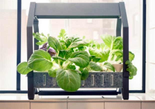 geeks in the garden 9 cool gardening gadgets. Black Bedroom Furniture Sets. Home Design Ideas