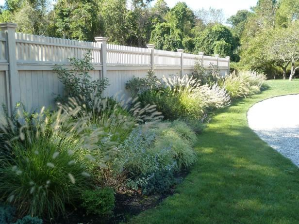 13 best ornamental grasses for Ornamental grass landscape ideas