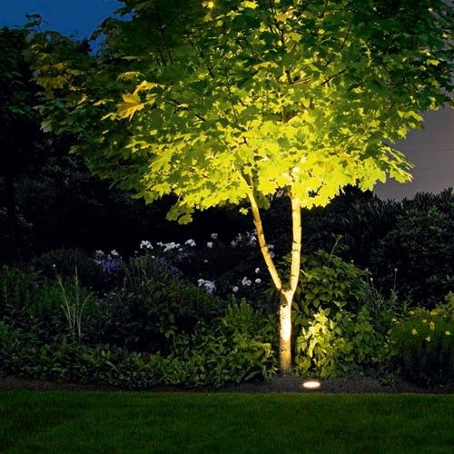 Landscape Lighting Ideas for Your Home and Yard on solar powered ideas, rock painting ideas, landscaping ideas, diy painting ideas, diy walkway ideas, path garden ideas, front walkway ideas, accessories ideas, path paving ideas, october wedding decoration ideas, walkways and pathways ideas, solar light ideas,